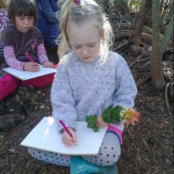 Drawing Nature